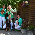 Wie wählt man den besten Tierarzt für Ihr Haustierc